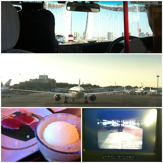From top...our interminable taxi ride with the blind driver; last views of Narita, last meal (coke float and sashimi) and the fabulous bird's eye view camera from the plane!